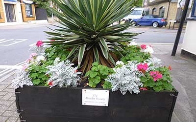Beccles Society Flowers